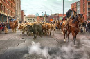 Ride in the National Western Stock Show Parade
